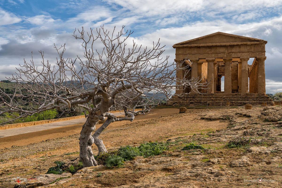 valle-dei-templi-2